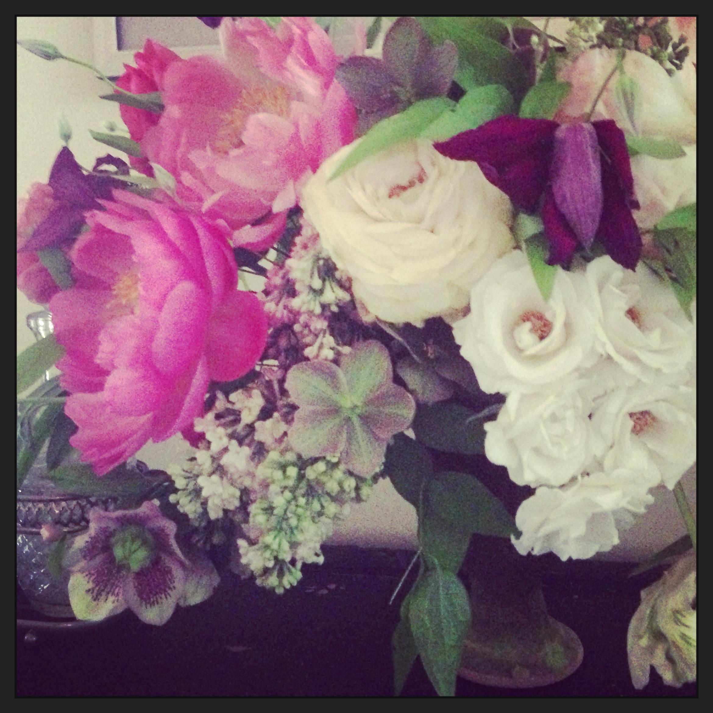 peonies helleborus, garden rose