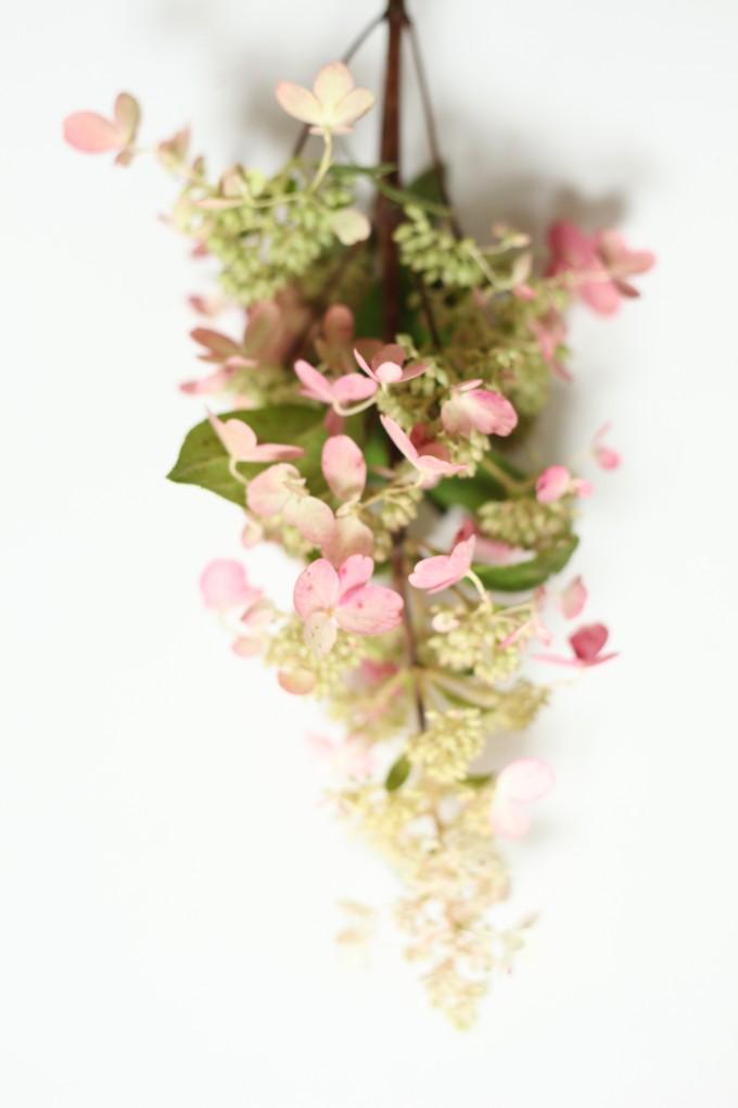 Hydrangea-Poppies & Posies